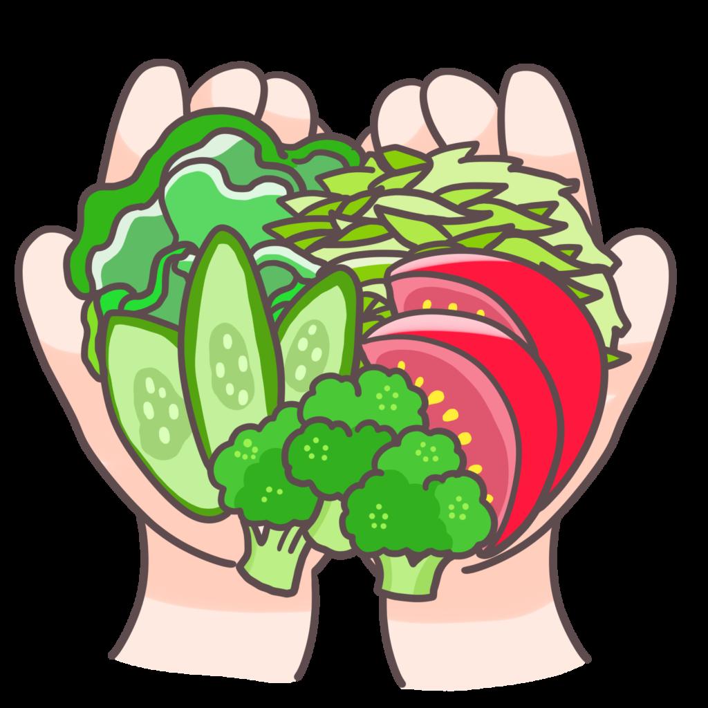 手計(てばかり)で生野菜1食分の野菜