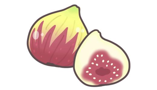 【果物】イチジクのかわいいフリーイラスト
