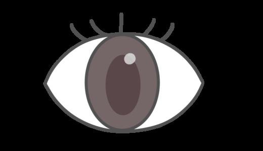 【医療・人体・部位】目のかわいいフリーイラスト