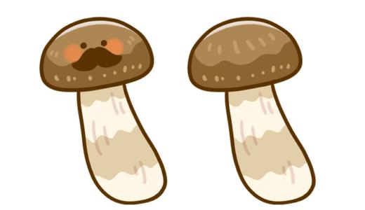 【医療・食べ物】松茸のイラスト