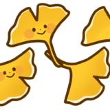 【植物・秋】銀杏(イチョウ)のかわいいフリーイラスト