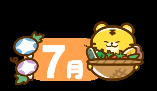 【干支・動物】寅年のかわいいカレンダー・日付のフリーイラスト 7月